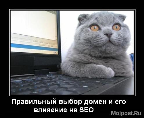 Правильный выбор домена и его влияние на SEO